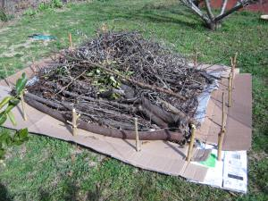 logs and scraps for base of Hugelkutur bed