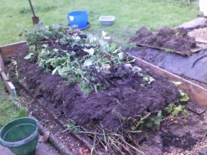 Logs and branches and leaves topped with soil/compost to grow..